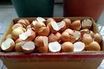 8 lợi ích bất ngờ từ vỏ trứng các bà nội trợ nên biết