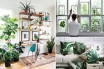 3 cách biến ngôi nhà của bạn thành một khu vườn đầy phong cách
