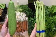 Chỉ 3 ngày không đi chợ, tiểu thương choáng váng với giá rau cải mơ 50.000 đồng/kg