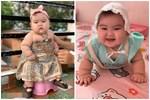 Bé gái 6 tháng tuổi đã nặng tới 13kg, các mẹ thi nhau 'xin vía' cân nặng nhưng mẹ bé lại quyết định 'cắt cữ sữa' của con