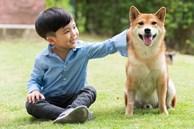 Học sinh vẽ chú chó đang bay trên bầu trời bị giáo viên yêu cầu vẽ lại, phụ huynh có cách xử trí thông minh ai nấy đều thán phục